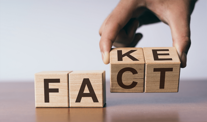seo facts and fakes