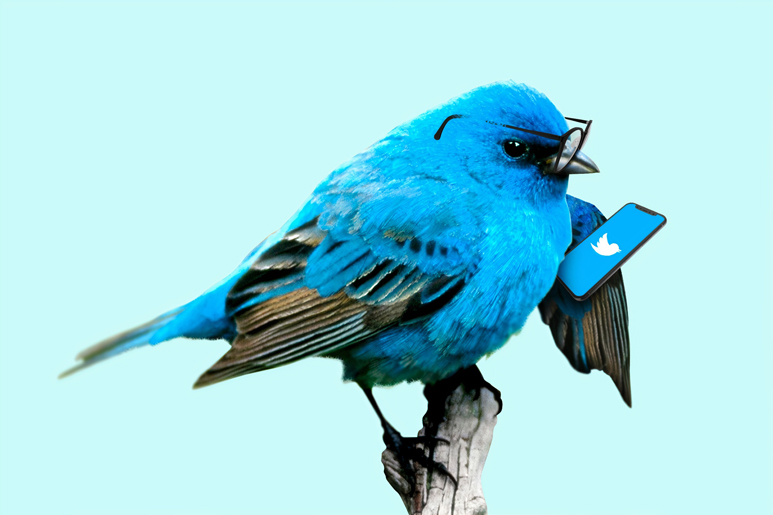 5 mistakes to avoid in Twitter