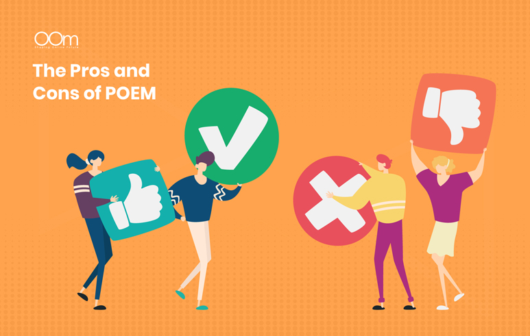 Pros And Cons Of Poem Framework